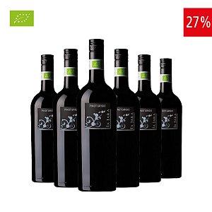 Pinot Grigio IGT Veneto Biologico La Jara