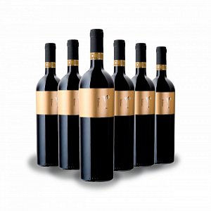 Details: Raboso DOC Piave