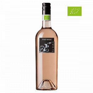 Details: Bio Pinot Grigio IGT Veneto Rosé Blush